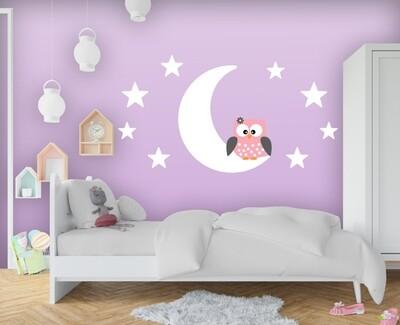 Luna con búho y estrellas color DJBUH01
