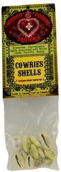 Hoodoo - Cowries Shells