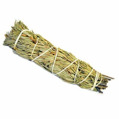 Sage - Pine  6'