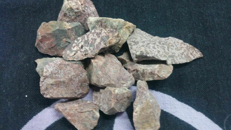 Stone - Dalmatian Jasper-Purple-Raw