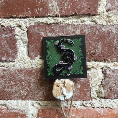 Serpent of Astrology