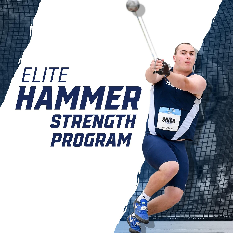 Elite Hammer Strength Program