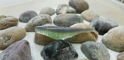 Bass Munitions Stealth Shad