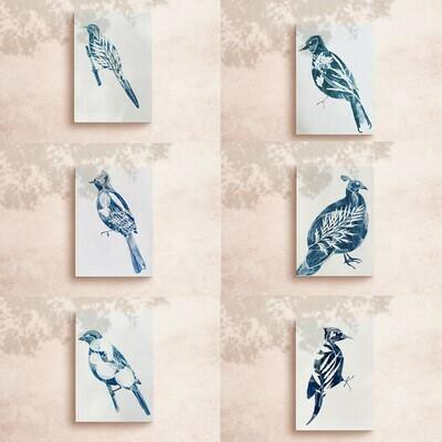 Jabarkhet bird series set of six