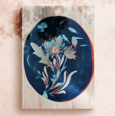 Daisy painted cyanotype