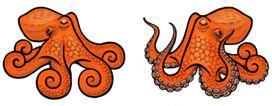Jabebo Octopus Earrings