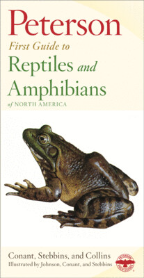 Peterson First Guide to Reptiles