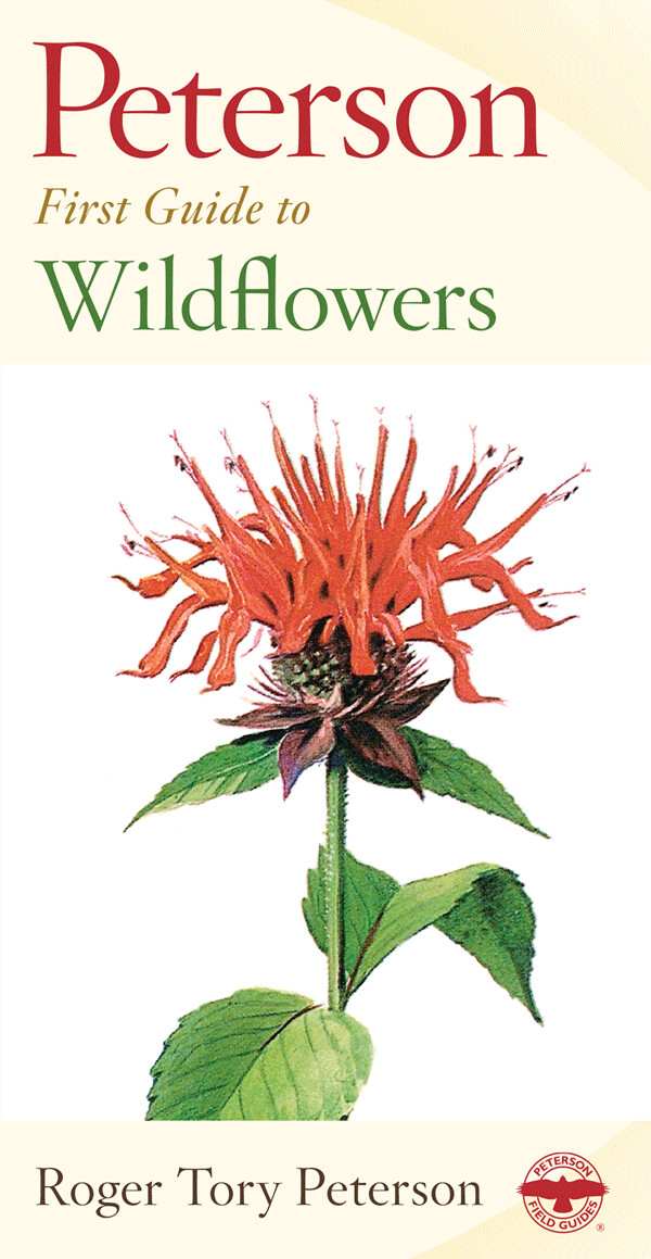 Peterson First Guide to Wildflowers