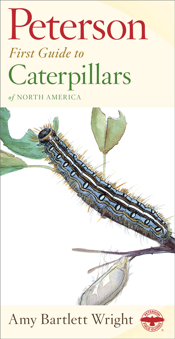 Peterson First Guide to Caterpillars