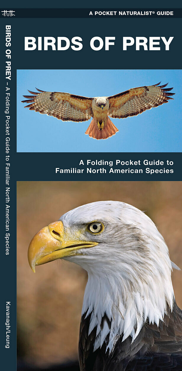 Pocket Naturalist: Birds of Prey