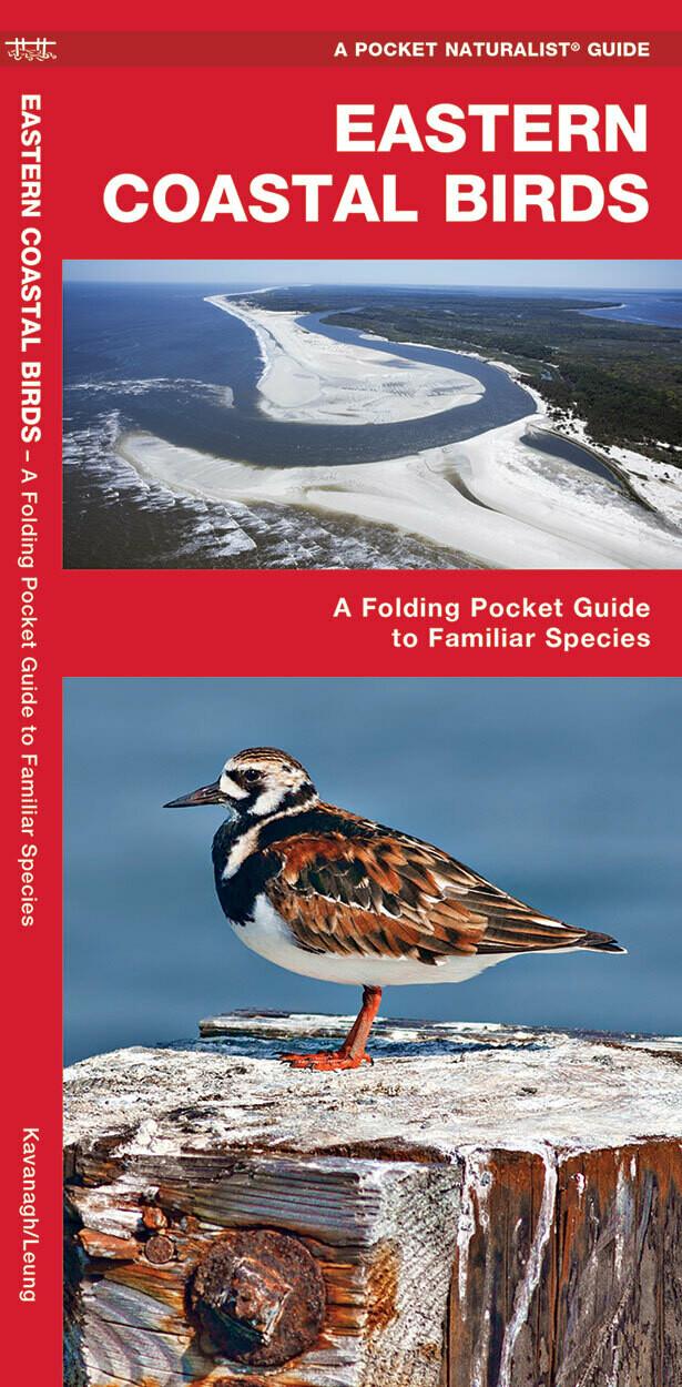 Pocket Naturalist: Eastern Coastal Birds