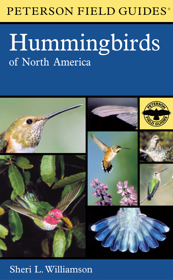Peterson Field Guide to Hummingbirds of North America