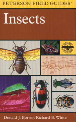 Peterson Field Guide to Insects
