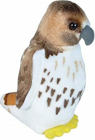 Audubon Birds Red-Tailed Hawk