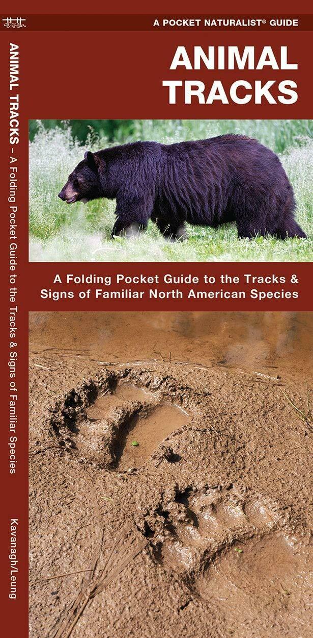 Pocket Naturalist: Animal Tracks