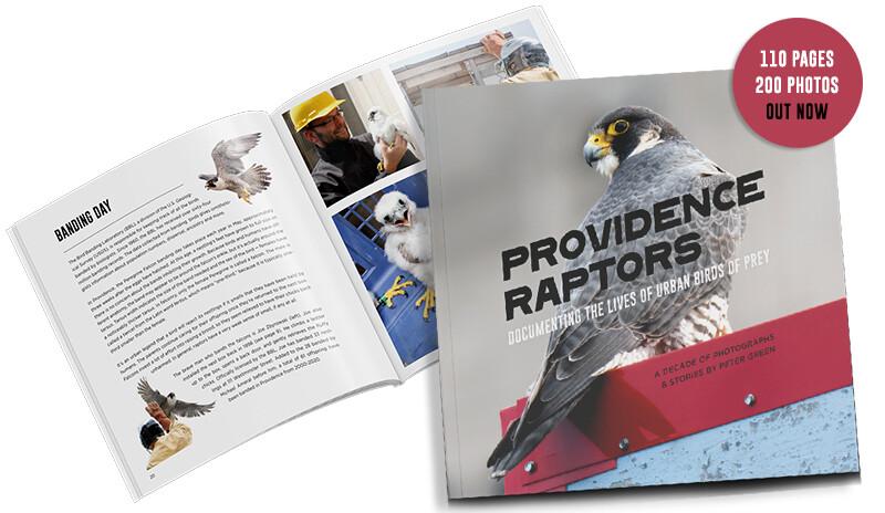 Providence Raptors Book