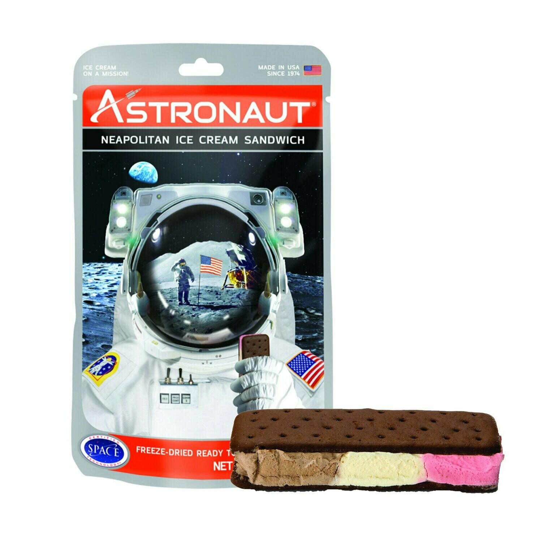 Astronaut Ice Cream Sandwich - Neapolitan