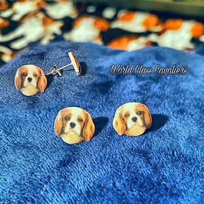 Cavalier King Charles Spaniel - Ear Studs