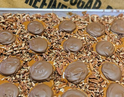 12 Piece Tybee Terrapin Box - Milk Chocolate