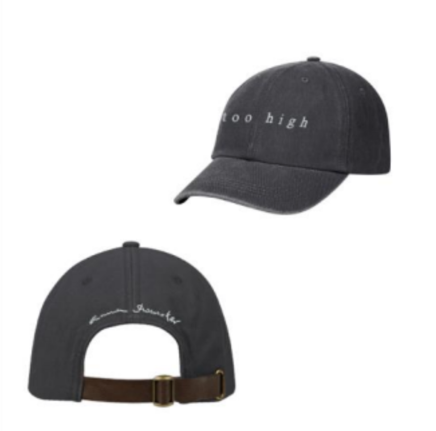 TOO HIGH DAD HAT