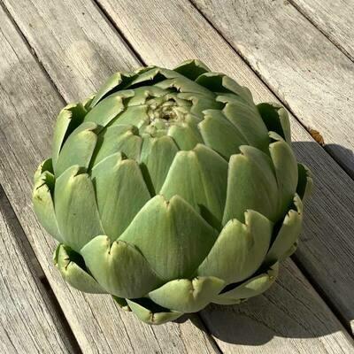 Artichaut vert (gros)