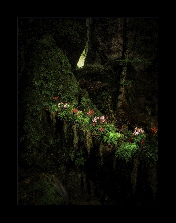Parkwald6-Zwischen Felsen