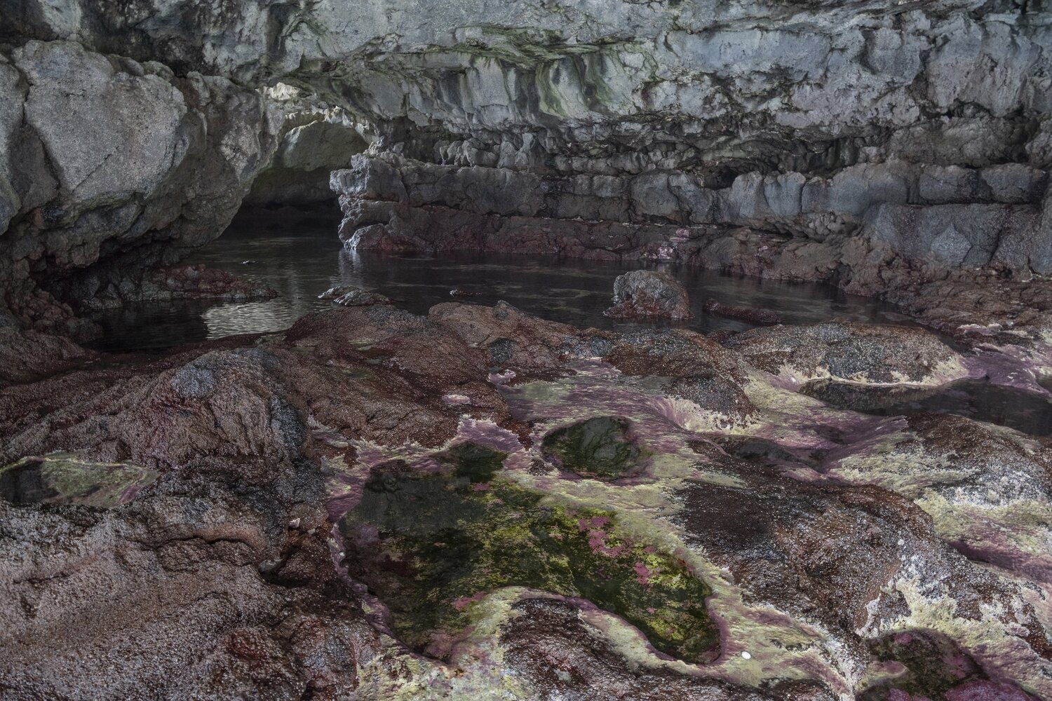 Cueva Charco Manso