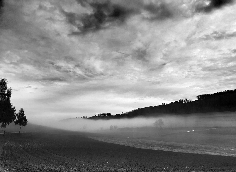 Morgennebel im Aargau