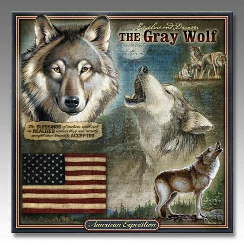 Gray Wolf Wildlife Series 3D Embossed Tin Sign