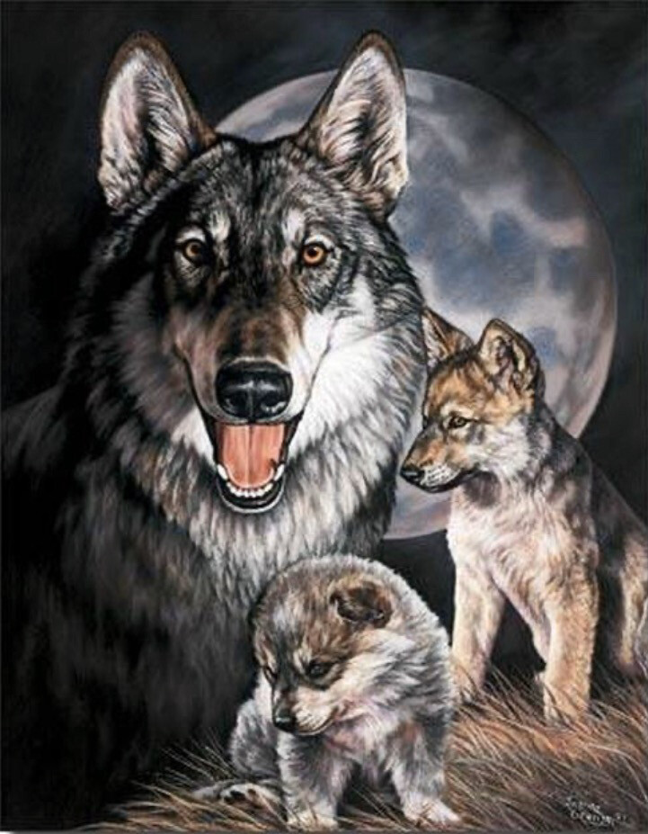 Wolf With Pups Tin Sign