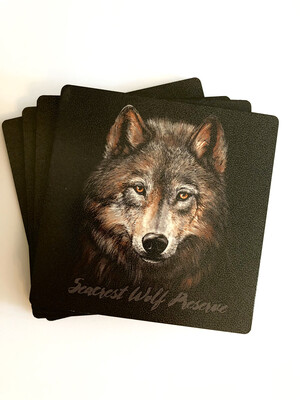 Wolf Portrait 4-Pack Coaster Set