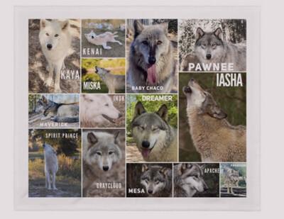Wolf Ambassadors Fleece Blanket
