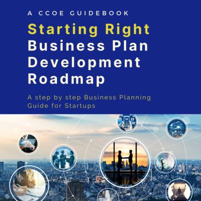 Starting Right Business Plan Development Roadmap