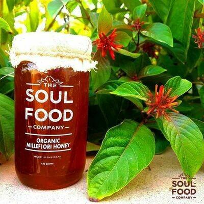 Organic Millefiori Honey - 485g