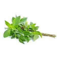 Basil Leaves - 100g