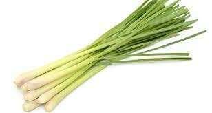 Lemon Grass - Per Stick