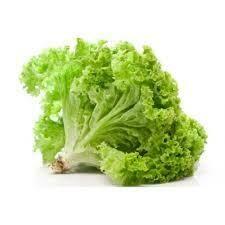 Salad Leaves /  Salad Pata - 1000g