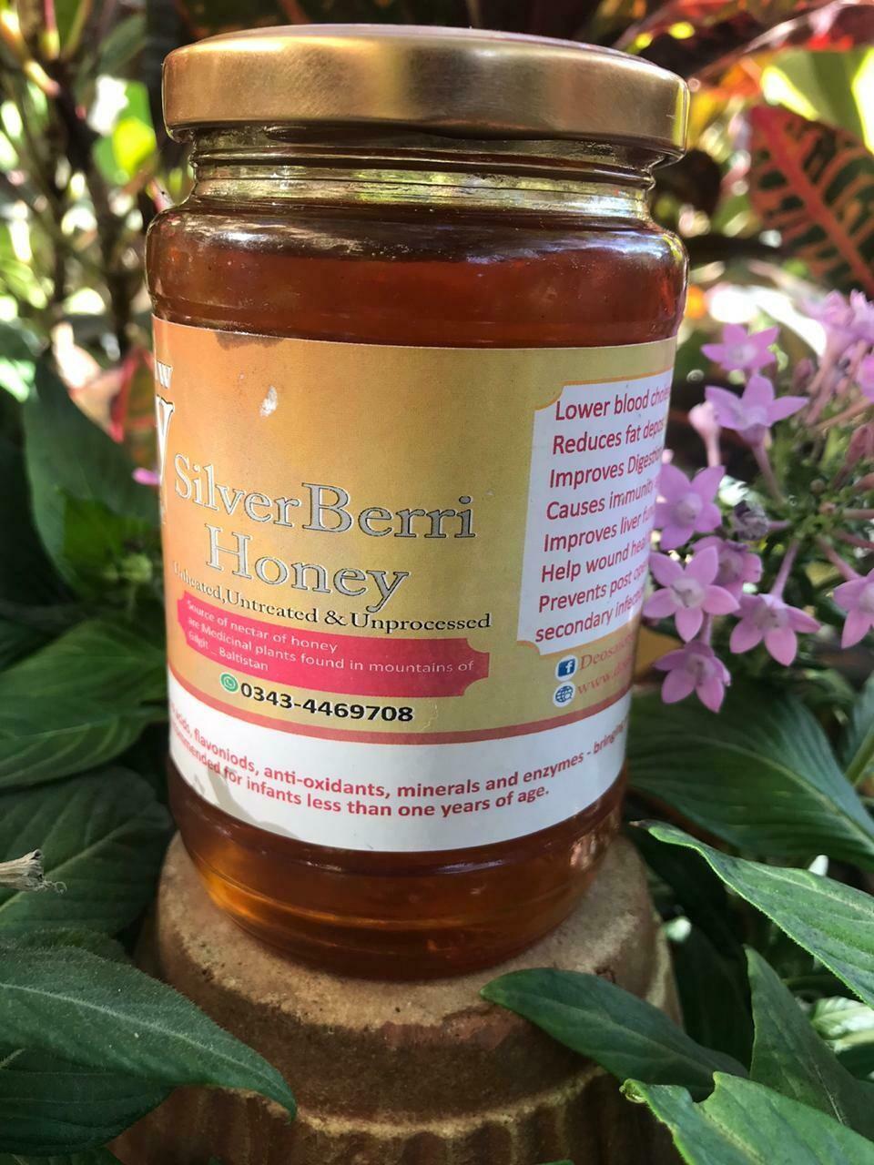 Silver Beri Honey - 450g