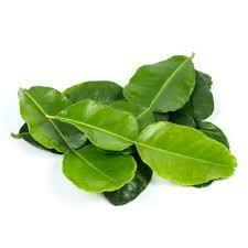 Lime Leaves - 30g