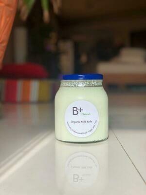 Organic Kefir Milk - 260ml