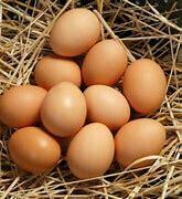 Desi Organic Eggs - Dozen
