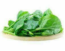 Spinach / Palak - 1000