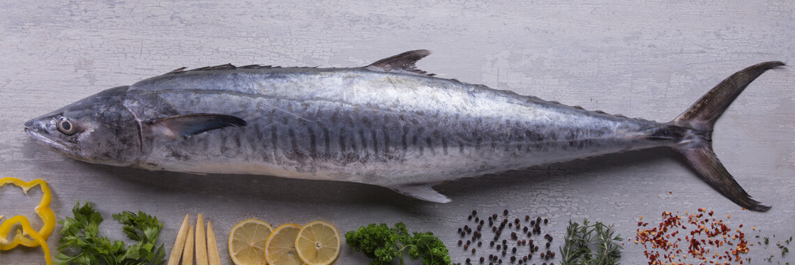 King Mackerel / Surmai  - 1000g (1 pc/kg), Subject to availability, Please check before ordering.