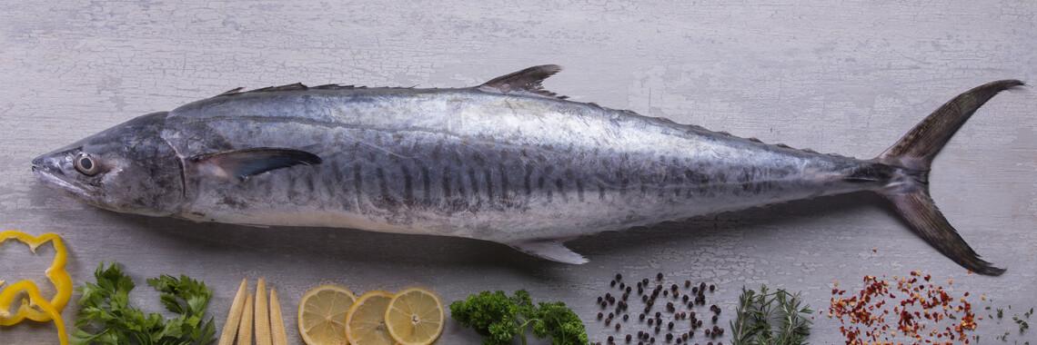 King Mackerel / Surmai  - 1000g (1 pc/kg)