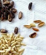 Pine Nuts without Shell - 250g