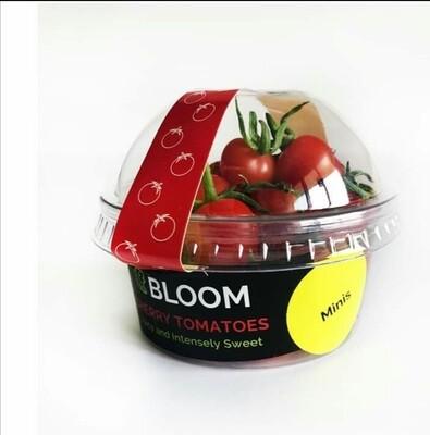 Mini Cherry Tomatoes - 150g