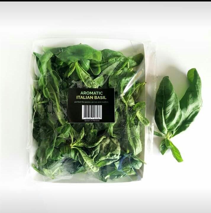 Italian Basil (Genovese) - 50g