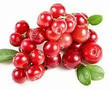 Cranberries - 125g