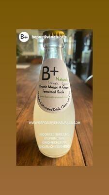 Organic Lychee & Lactos Fermented Soda - 300ml