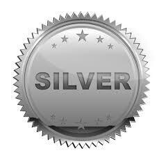 Forfait SILVER 1 an